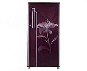 LG 190 L 5 Star Direct-Cool Single Door Refrigerator (GL-B205KSLN(SL), Scarlet Lily)