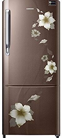 Samsung 192 L 4 Star Direct Cool  Refrigerator (RR20M172YD2/RR20M272YD2 , Star Flower Brown)